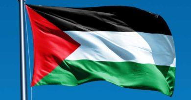 Solarabic Palastine Flag