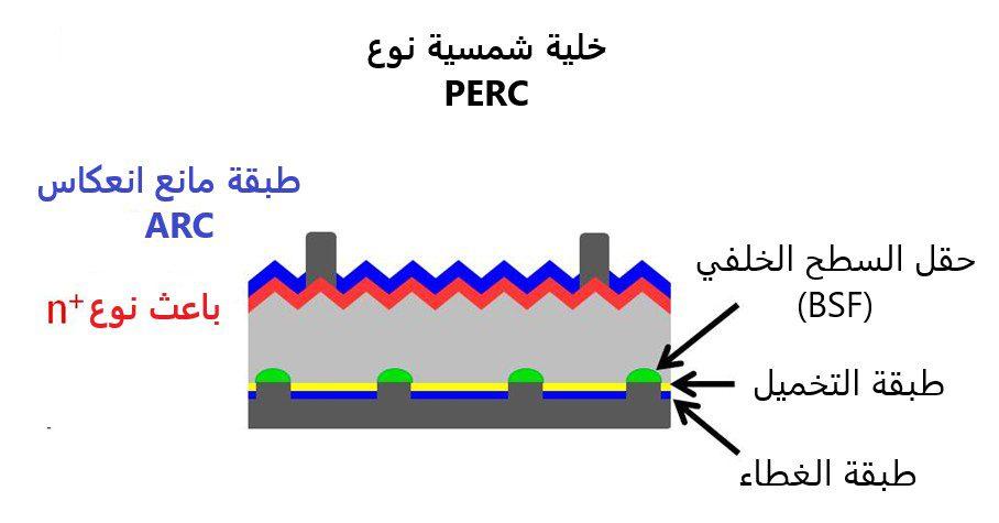 نموذج يوضح أقسام الخلية الشمسية نوع بيرك PERC