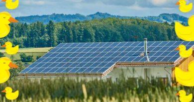 """""""منحني البطة"""": أكبر تحد يواجه الإنتشار الواسع للطاقة الشمسية"""