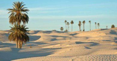 محطة طاقة شمسية كهروضوئية هجينة في تونس
