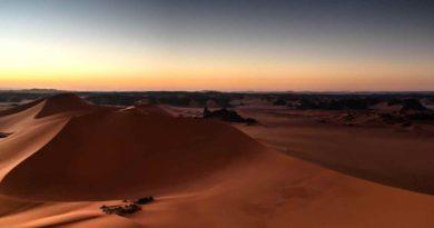 الجزائر: وزارة الطاقة تبدي اهتمامها بمبادرة «ديزرتيك» الألمانية