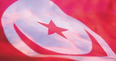هام: الحكومة التونسية تسمح بتأسيس شركات الإنتاج الذاتي للكهرباء IPP