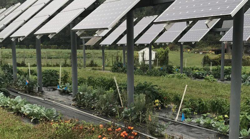 الزراعة الكهروضوئية