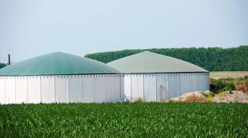 طاقة الكتلة الحيوية في المغرب